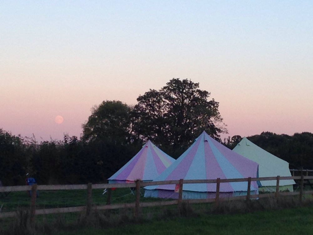 Pink Moon over 5m bell tents at Botany Camping and glamping